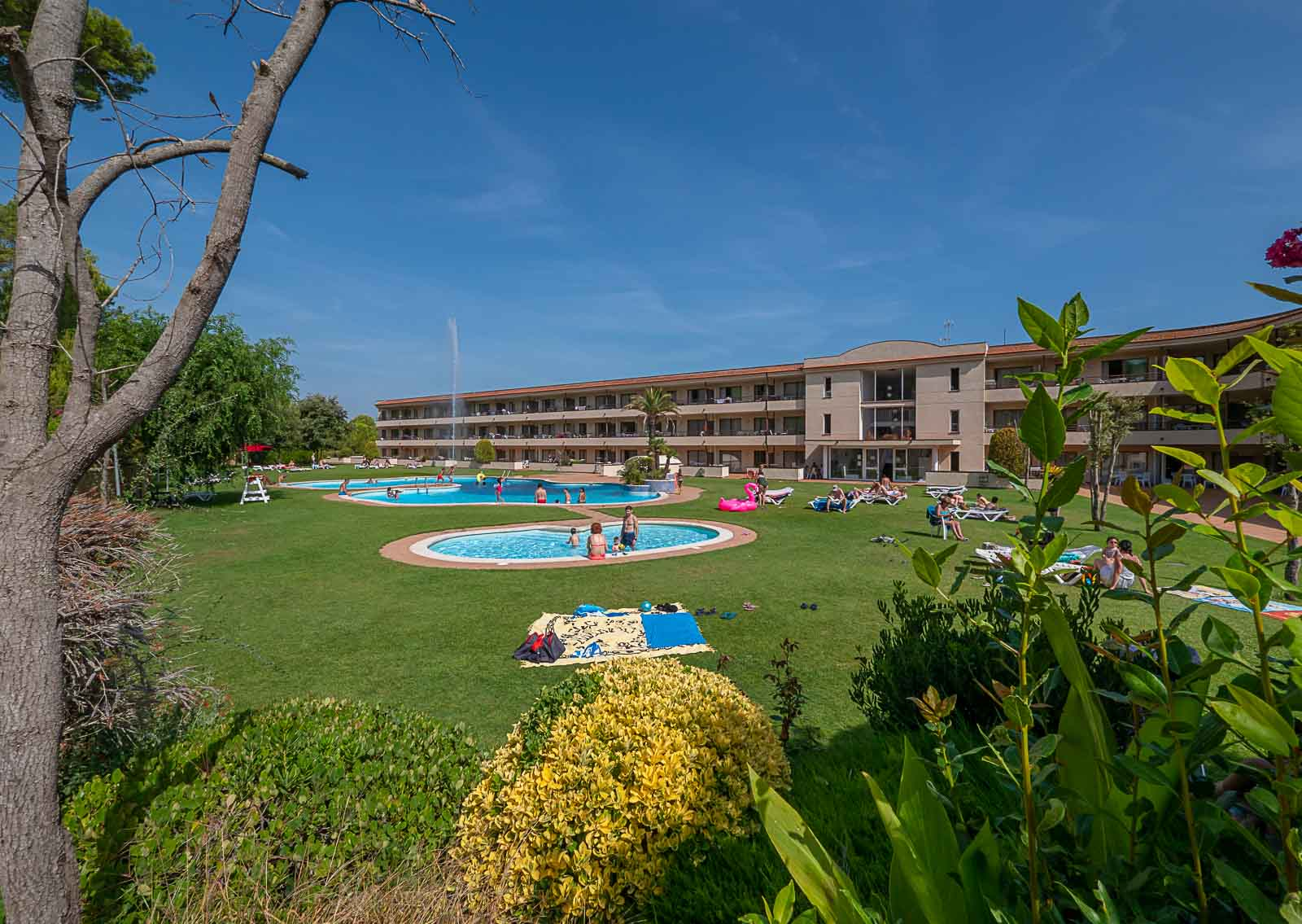 ahgolfbeach Golf Beach Pals _vista jardines